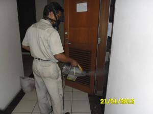 Pest Control 11