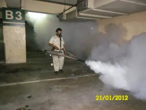 Pest Control 37